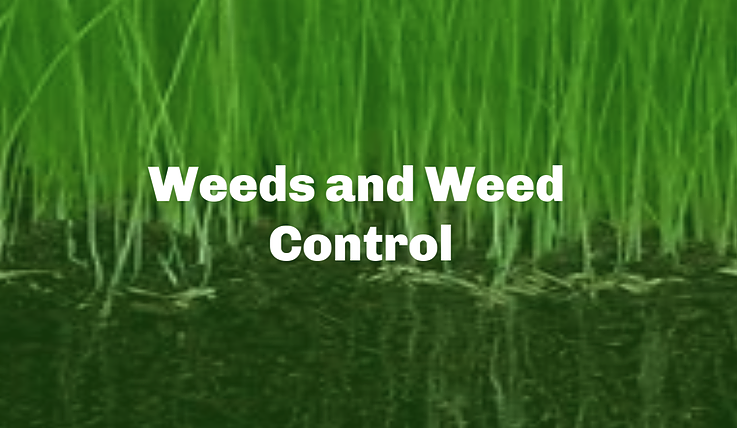 Weeds and Weed Control