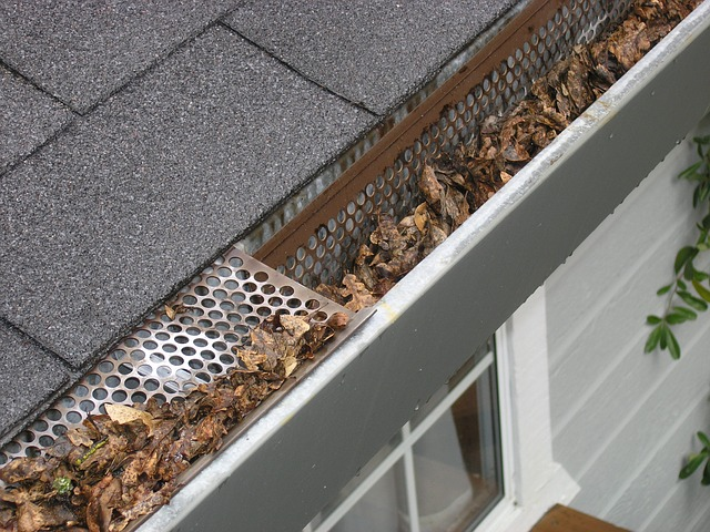 unmaintained gutters